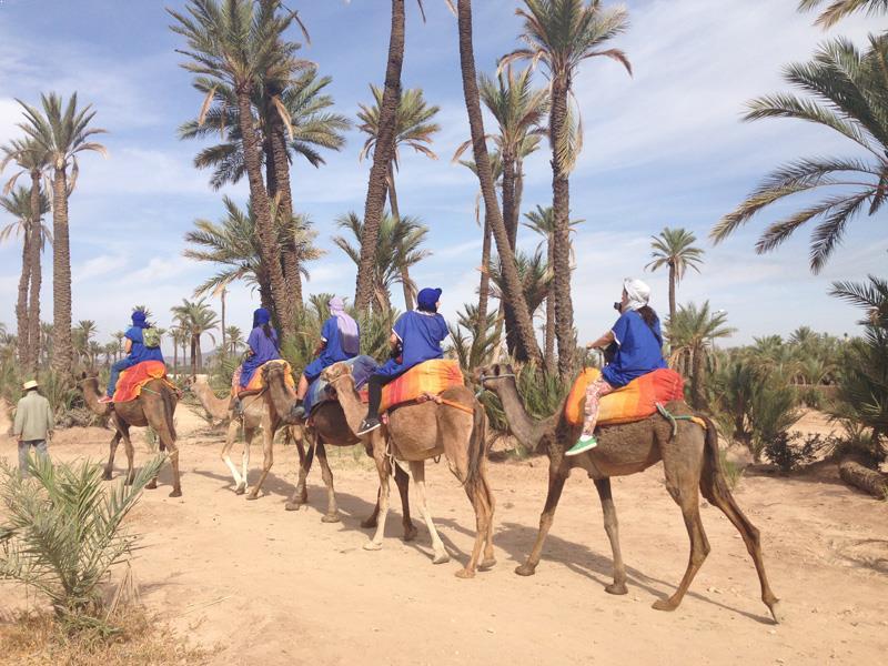 http://www.moroccodesertvip.com/wp-content/uploads/2018/11/Camel-ride-Marrakech-Morocco-Camel-Trekking-1.jpg
