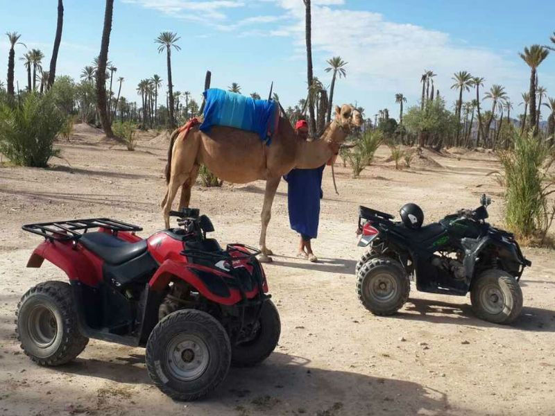 http://www.moroccodesertvip.com/wp-content/uploads/2018/11/quad-and-camel-ride-combined.jpg